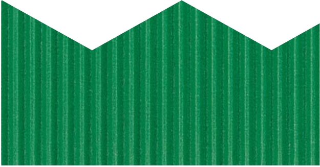 Emerald Green Zig-Zag Bordette