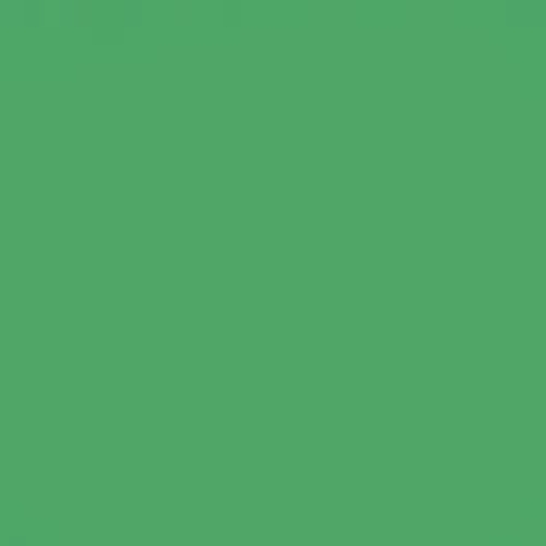 Chromagreen Photographic Background Paper, 2.72m x 11m