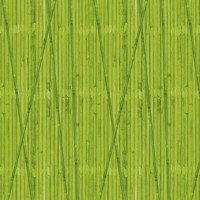 Bamboo display paper