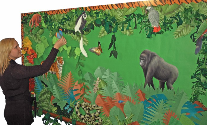 Rainforest Animals display