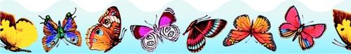 T-91353 Butterflies