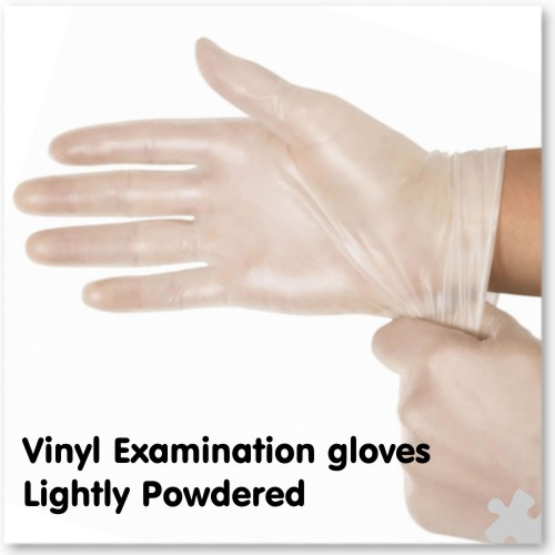 Vinyl Examination Gloves, Lightly Powdered