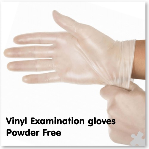 Vinyl Examination Gloves, Powder Free